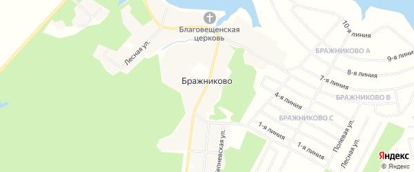 Карта деревни Бражниково в Московской области с улицами и номерами домов