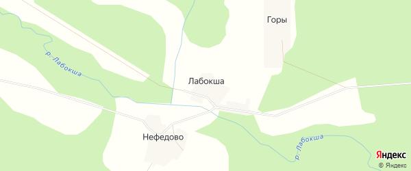 Карта деревни Лабокши в Вологодской области с улицами и номерами домов