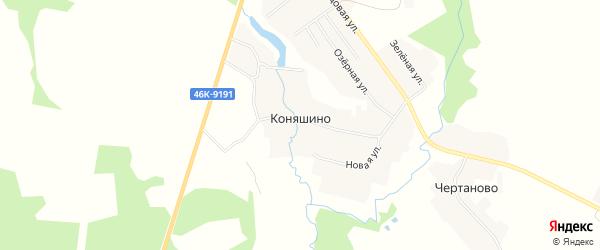 Карта деревни Коняшино в Московской области с улицами и номерами домов