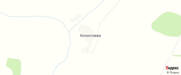 Карта деревни Колонтаева в Орловской области с улицами и номерами домов