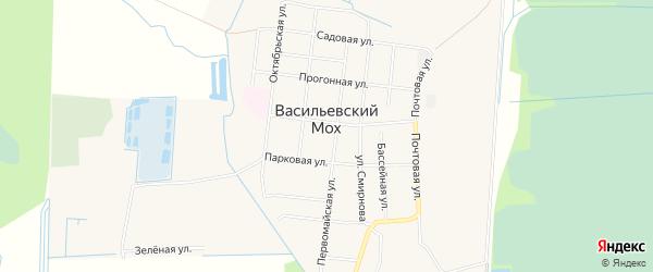 Карта поселка Васильевского Моха в Тверской области с улицами и номерами домов