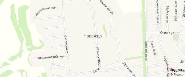 Брусничный переулок на карте поселка Надежды Орловской области с номерами домов