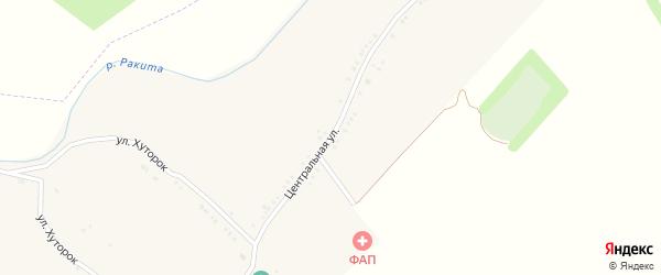 Центральная улица на карте Псковского села с номерами домов