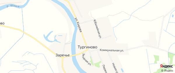 Карта деревни Тургиново в Тверской области с улицами и номерами домов