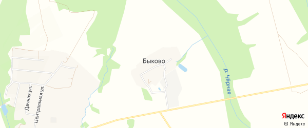 Карта деревни Быково в Московской области с улицами и номерами домов