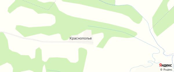 Карта деревни Краснополья в Калужской области с улицами и номерами домов