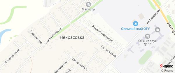 Городская улица на карте деревни Некрасовки Орловской области с номерами домов