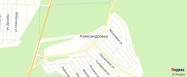 Территория СНТ Виктория на карте деревни Александровки Тверской области с номерами домов