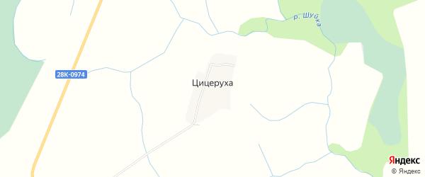 Карта деревни Цицерухи сельского поселения Некрасово в Тверской области с улицами и номерами домов
