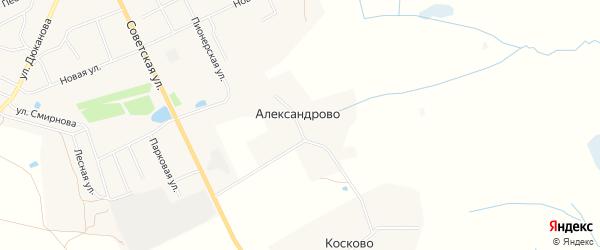 Карта деревни Александрово сельского поселения Некрасово в Тверской области с улицами и номерами домов