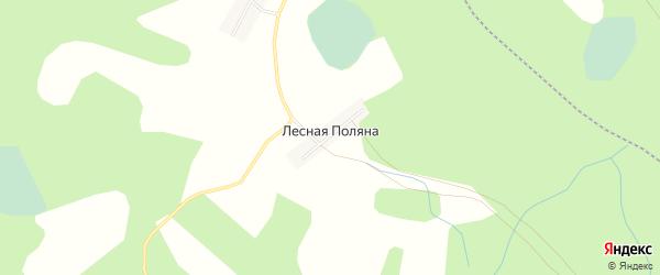 Карта деревни Лесной Поляны в Новгородской области с улицами и номерами домов