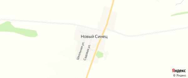 Карта деревни Нового Синца в Орловской области с улицами и номерами домов