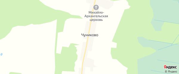 Карта деревни Чуниково в Вологодской области с улицами и номерами домов