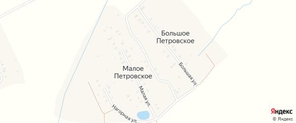 Академическая улица на карте деревни Малого Петровского Московской области с номерами домов