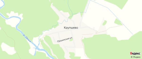 Карта деревни Крупшево в Тверской области с улицами и номерами домов