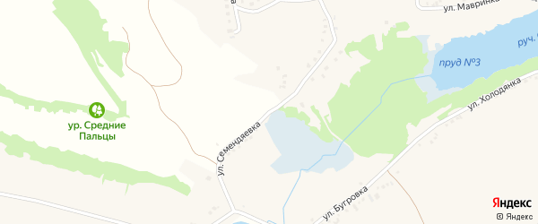 Улица Семендяевка на карте села Курасовки с номерами домов