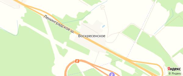 Карта деревни Воскресенского в Тверской области с улицами и номерами домов