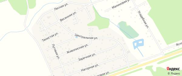 Центральная улица на карте деревни Тишнево Калужской области с номерами домов