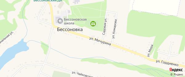 Улица Мичурина на карте села Бессоновки Белгородской области с номерами домов
