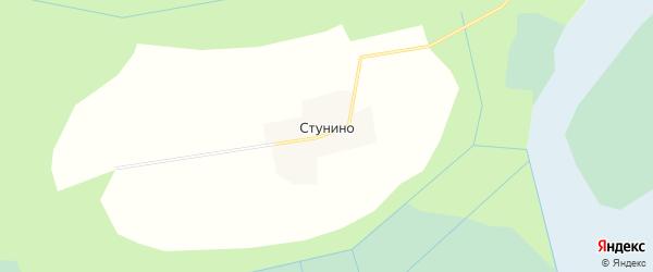 Карта деревни Стунино в Вологодской области с улицами и номерами домов