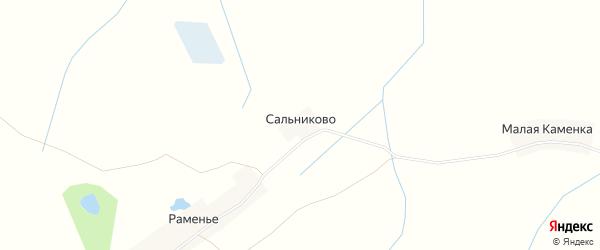 Карта деревни Сальниково в Тверской области с улицами и номерами домов
