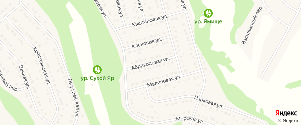 Абрикосовая улица на карте Стрелецкого села с номерами домов