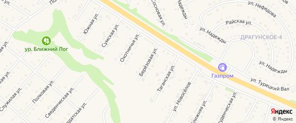 Березовая улица на карте Пушкарного села Белгородской области с номерами домов