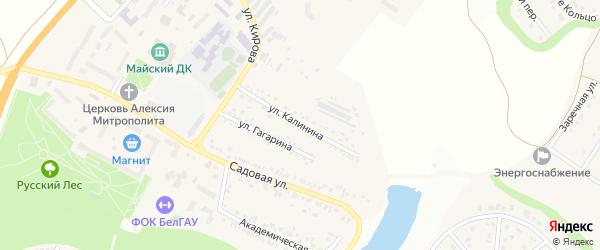 Улица Калинина на карте Майского поселка Белгородской области с номерами домов
