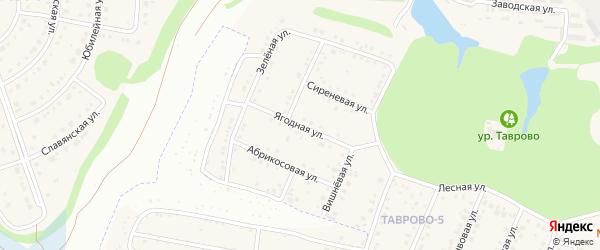 Ягодная улица на карте Таврово 5-й микрорайона с номерами домов