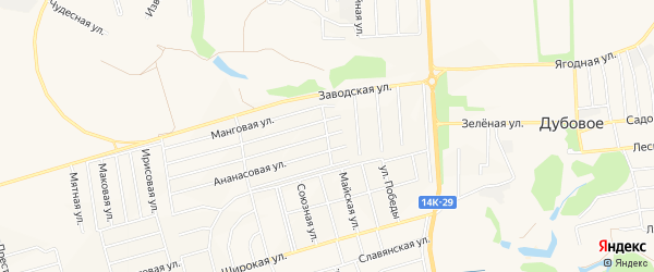 Карта поселка Дубового в Белгородской области с улицами и номерами домов