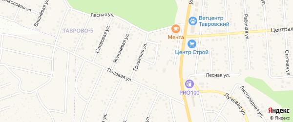 Грушевый переулок на карте Таврово 5-й микрорайона с номерами домов