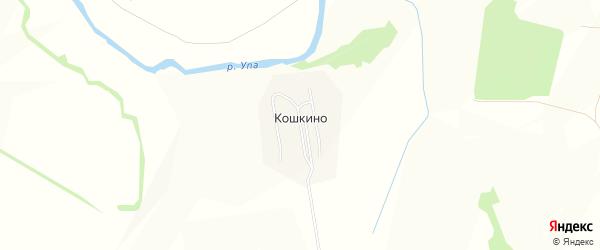 Карта деревни Кошкино в Тульской области с улицами и номерами домов