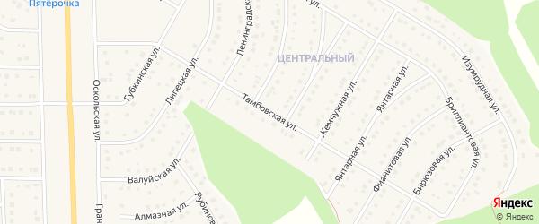 Тамбовская улица на карте Никольского села Белгородской области с номерами домов