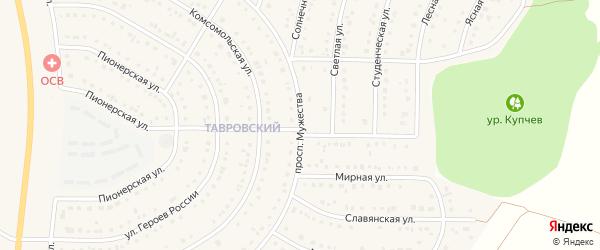 Проспект Мужества на карте Никольского села Белгородской области с номерами домов