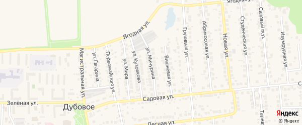 Улица Мичурина на карте поселка Дубового с номерами домов