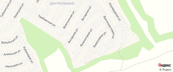 Фианитовая улица на карте Никольского села Белгородской области с номерами домов
