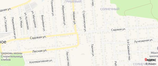 Садовая улица на карте поселка Дубового с номерами домов