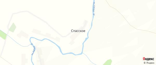 Карта деревни Спасского в Орловской области с улицами и номерами домов