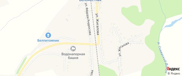 Улица Ф.Андросова на карте Беломестного села с номерами домов