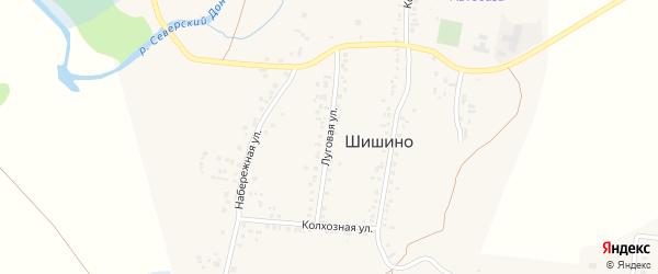 Луговая улица на карте села Шишино Белгородской области с номерами домов