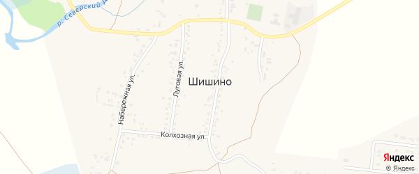 Переулок Новоселов на карте села Шишино Белгородской области с номерами домов