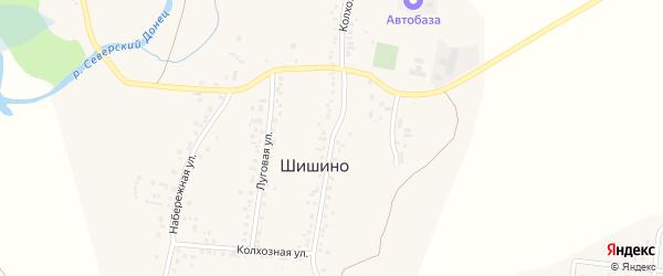 Колхозная улица на карте села Шишино Белгородской области с номерами домов