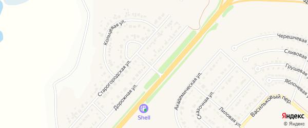 Дорожная улица на карте Новосадового поселка Белгородской области с номерами домов