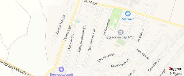 Центральная улица на карте Новосадового поселка Белгородской области с номерами домов