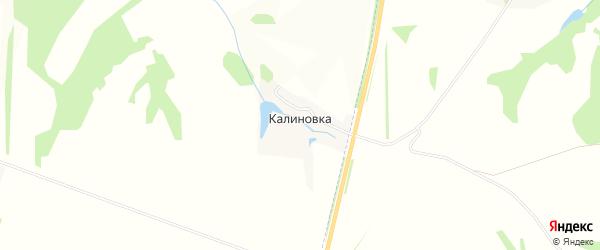 Карта деревни Калиновки в Тульской области с улицами и номерами домов