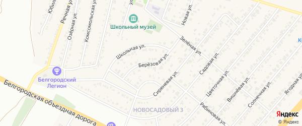 Березовая улица на карте Новосадового поселка Белгородской области с номерами домов