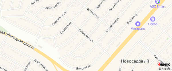 Рябиновая улица на карте Новосадового поселка Белгородской области с номерами домов
