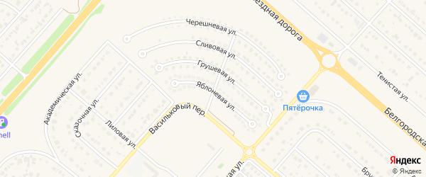 Васильковая улица на карте Новосадового поселка Белгородской области с номерами домов