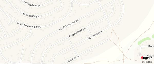 Родниковая улица на карте Новосадового поселка Белгородской области с номерами домов