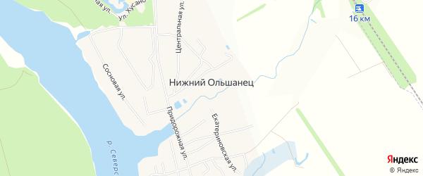 Карта села Нижнего Ольшанца в Белгородской области с улицами и номерами домов